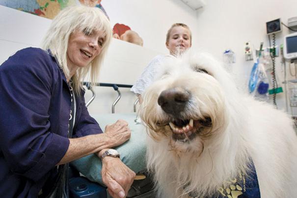 pet-therapy-ospedale-permette-ingresso-cani-gatti-animali-5