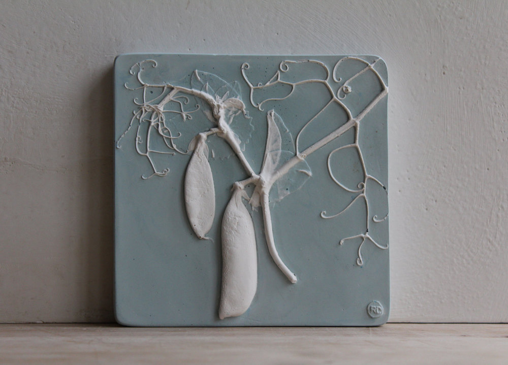 piastrelle-gesso-piante-fiori-rachel-dein-1