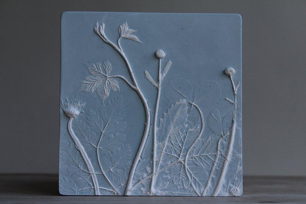 piastrelle-gesso-piante-fiori-rachel-dein-5
