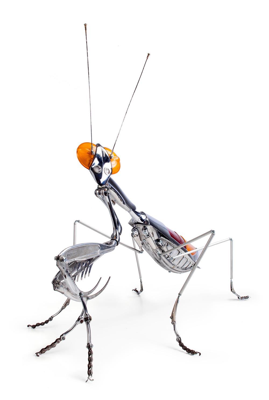 sculture-insetti-animali-parti-riciclate-bici-auto-moto-edouard-martinet-03