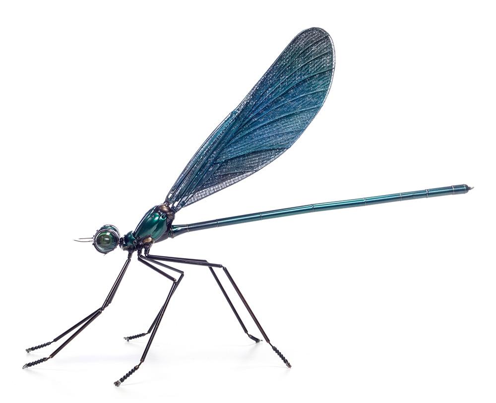 sculture-insetti-animali-parti-riciclate-bici-auto-moto-edouard-martinet-04