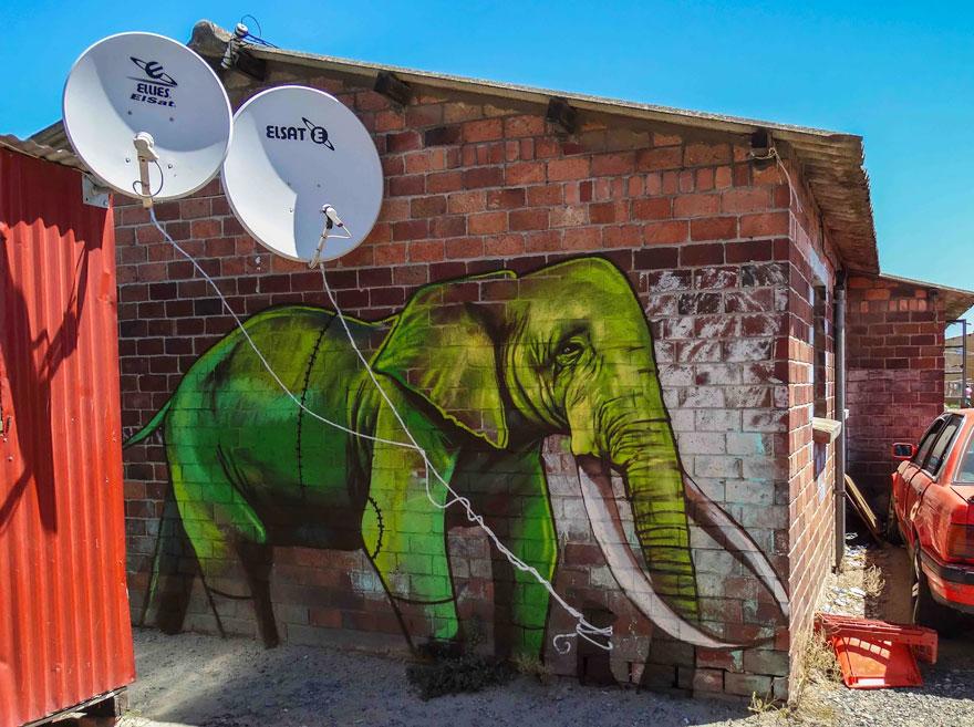 street-art-elefanti-falko-sud-africa-03