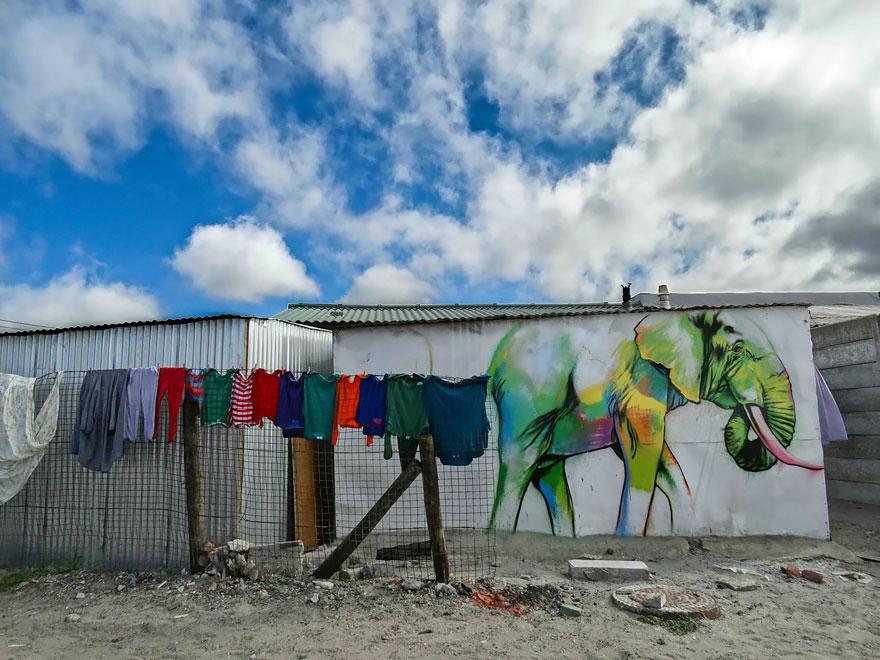street-art-elefanti-falko-sud-africa-04