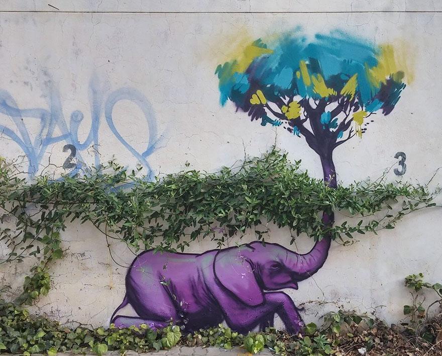 street-art-elefanti-falko-sud-africa-07