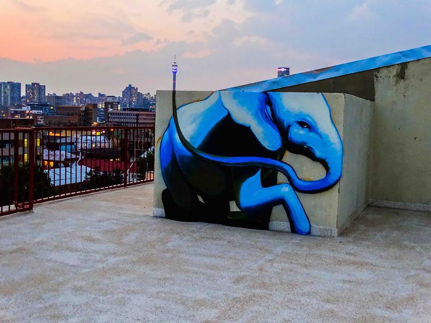 street-art-elefanti-falko-sud-africa-08