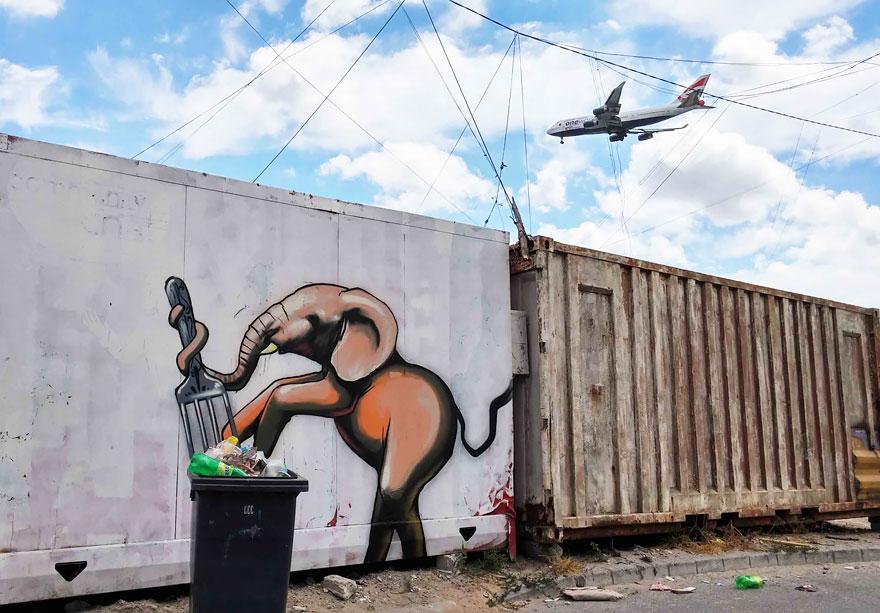 street-art-elefanti-falko-sud-africa-11