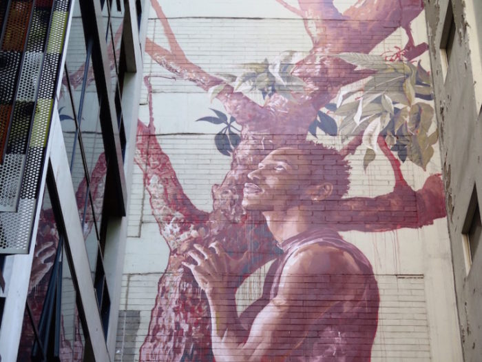 street-art-melbourne-australia-fintan-magee-1