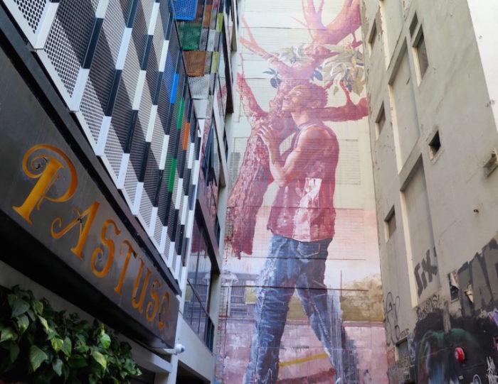 street-art-melbourne-australia-fintan-magee-5