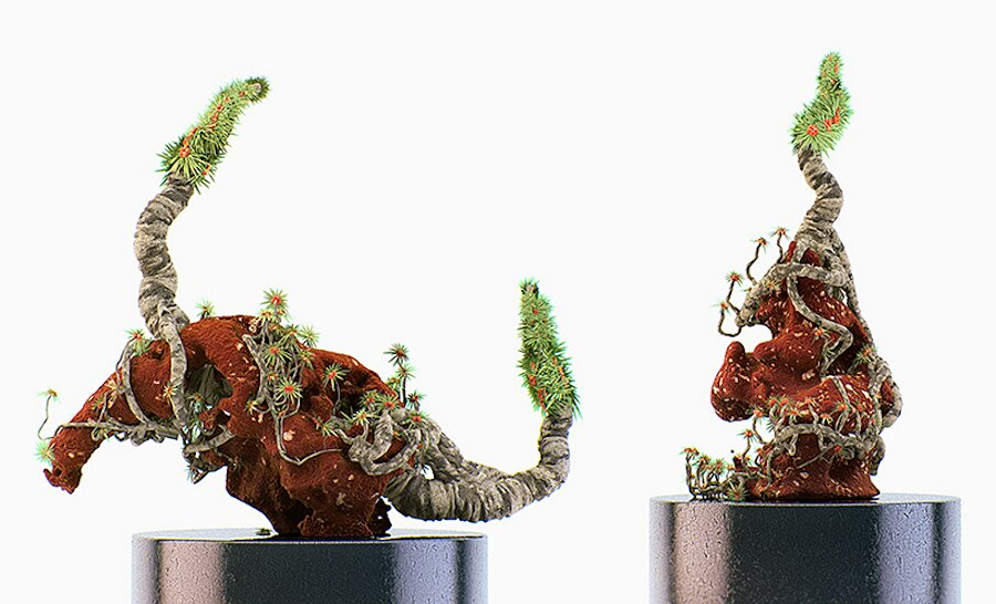 alien-bonsai-extraterrestri-stampa-3d-chaotic-atmospheres-07