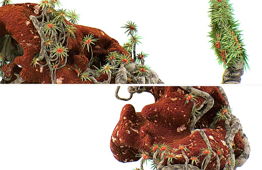 alien-bonsai-extraterrestri-stampa-3d-chaotic-atmospheres-08