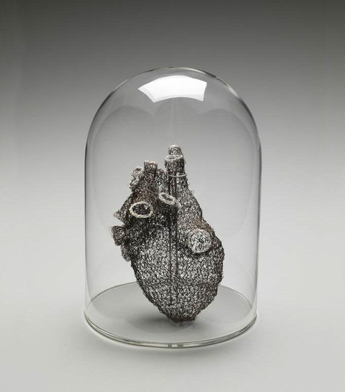 anatomia-cuore-uncinetto-anne-mondro-03