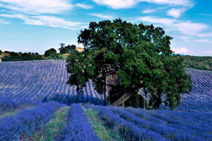 casa-albero-suite-bleue-arlena-di-castro-viterbo-la-piantata-01