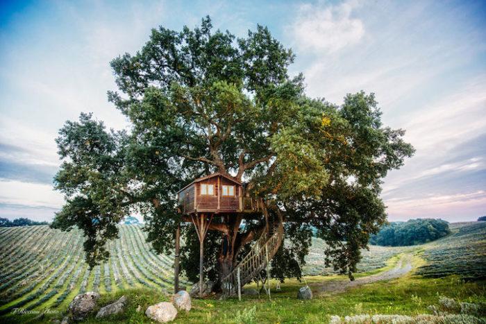 casa-albero-suite-bleue-arlena-di-castro-viterbo-la-piantata-06