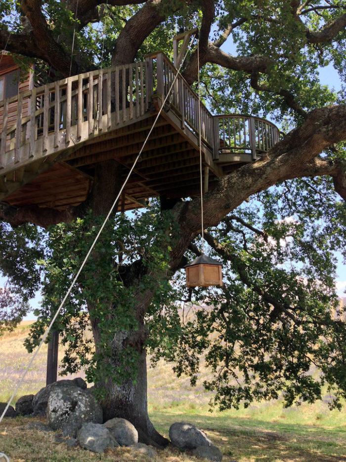 casa-albero-suite-bleue-arlena-di-castro-viterbo-la-piantata-08