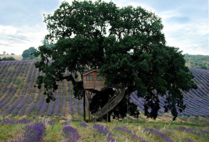 casa-albero-suite-bleue-arlena-di-castro-viterbo-la-piantata-13
