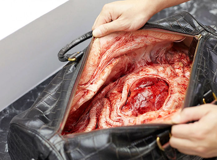 dentro-borse-pelle-pelletteria-crudelta-animali-campagna-peta-asia-01