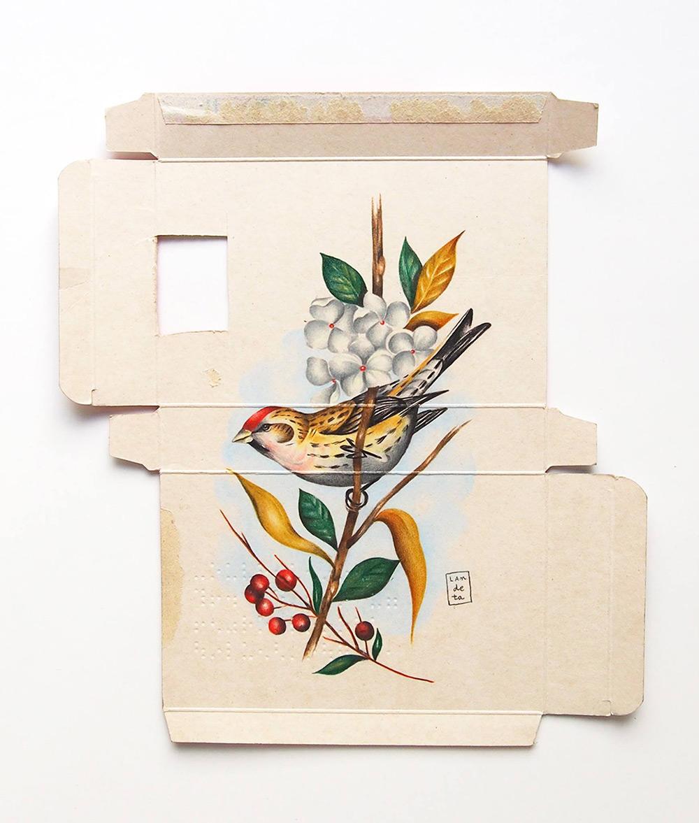 dipinti-uccelli-scatole-farmaci-confezioni-sara-landeta-1