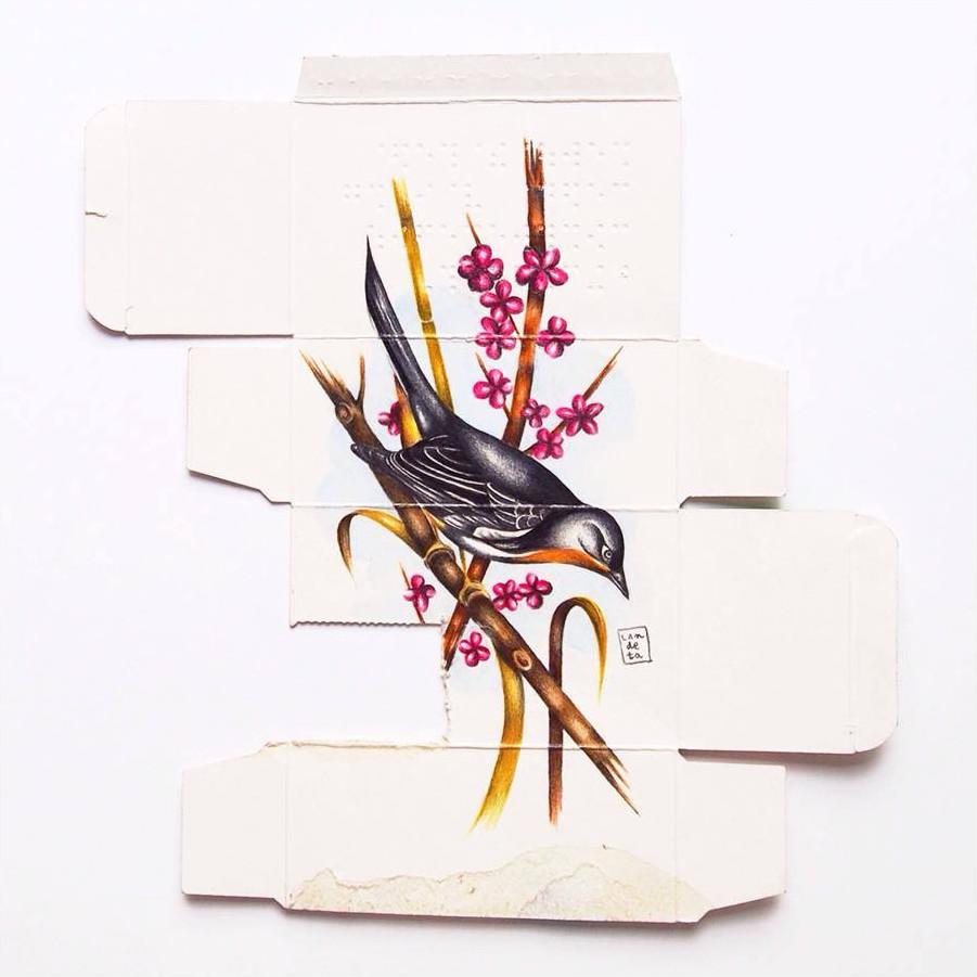 dipinti-uccelli-scatole-farmaci-confezioni-sara-landeta-2
