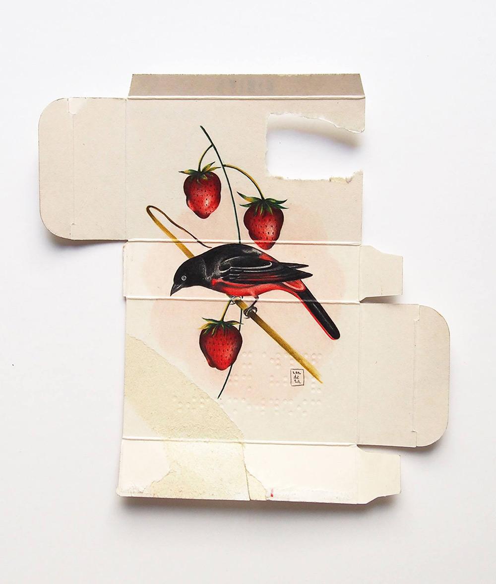 dipinti-uccelli-scatole-farmaci-confezioni-sara-landeta-3