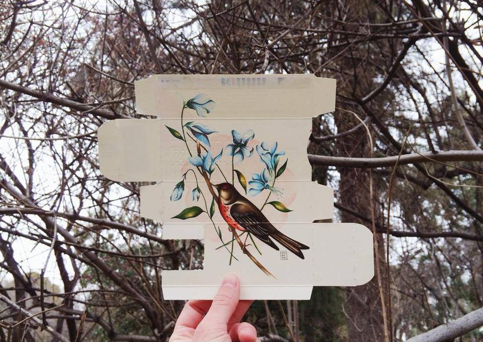 dipinti-uccelli-scatole-farmaci-confezioni-sara-landeta-5