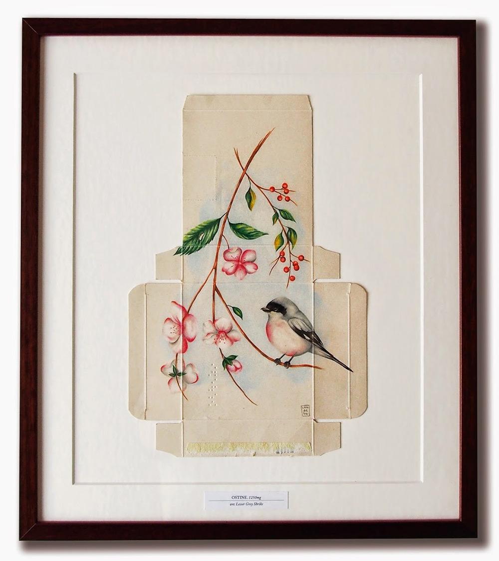dipinti-uccelli-scatole-farmaci-confezioni-sara-landeta-6