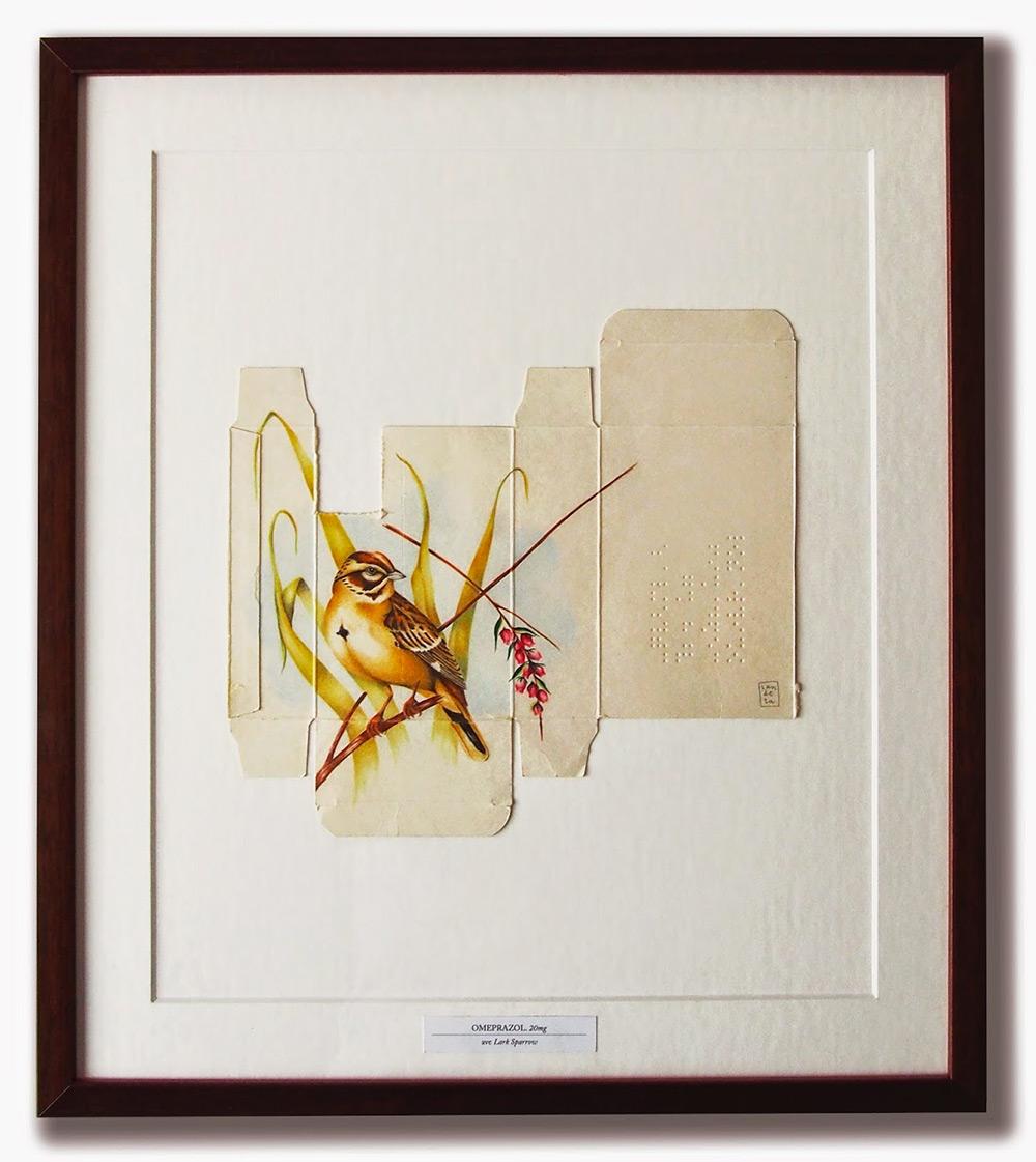 dipinti-uccelli-scatole-farmaci-confezioni-sara-landeta-7