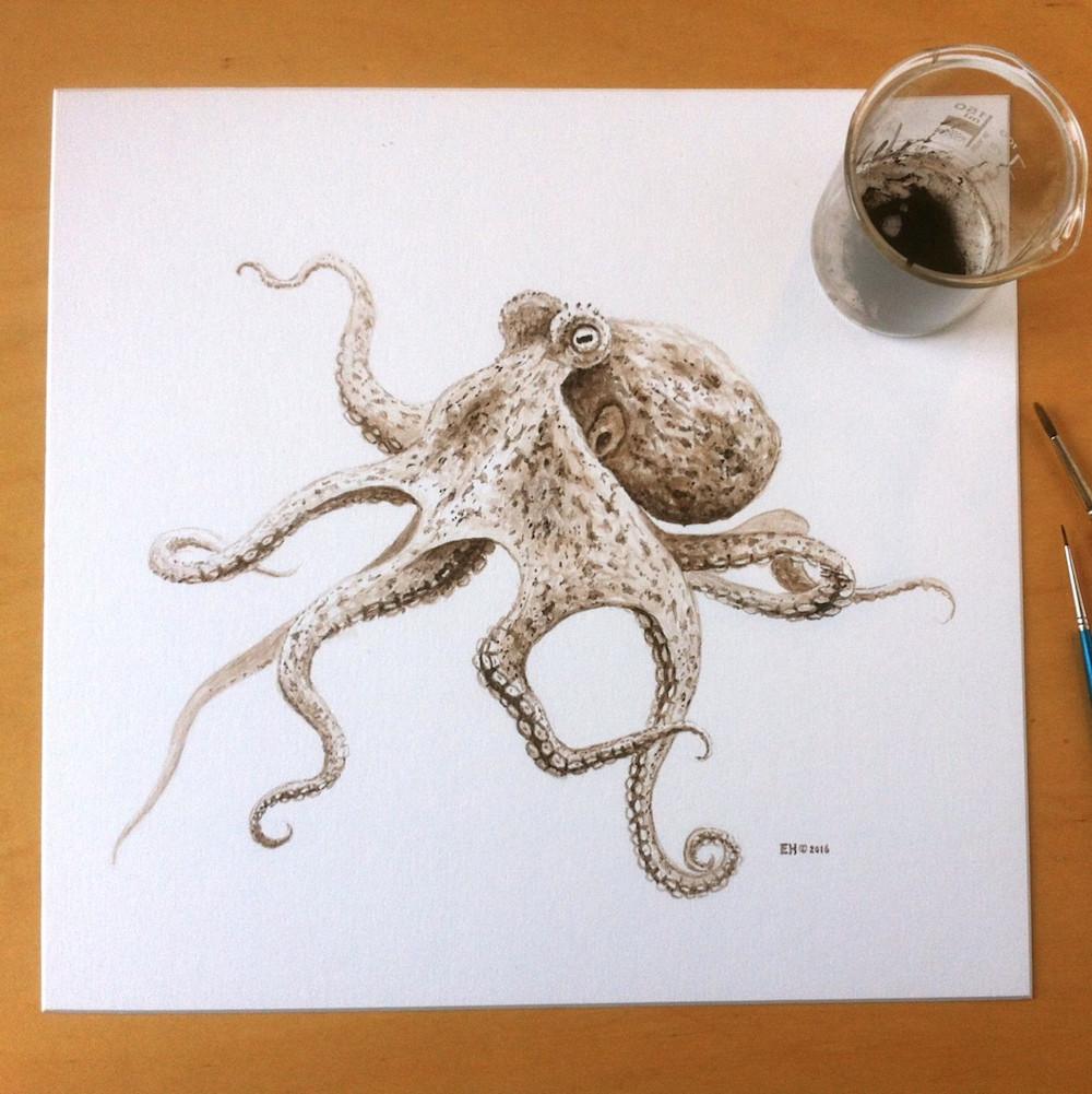 disegno-polipo-preistorico-fossile-inchiostro-sacca-esther-van-hulsen-1