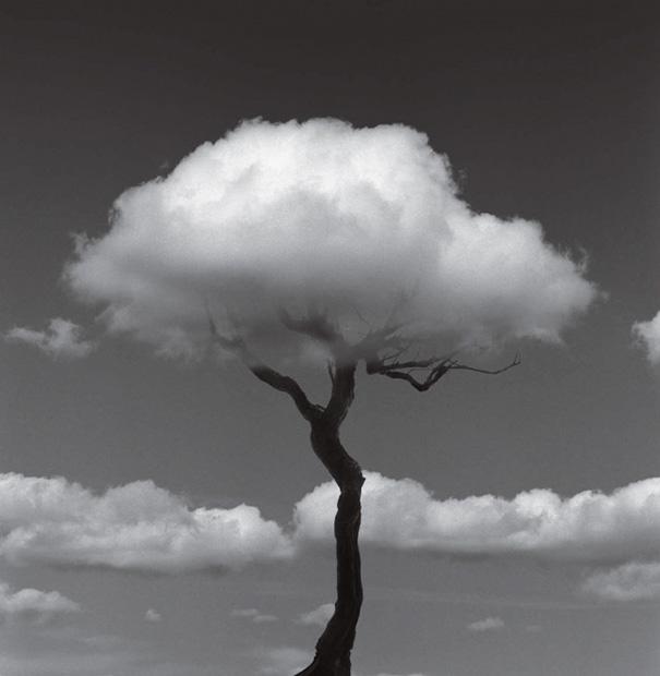 fotografia-bianco-nero-illusioni-ottiche-chema-madoz-02