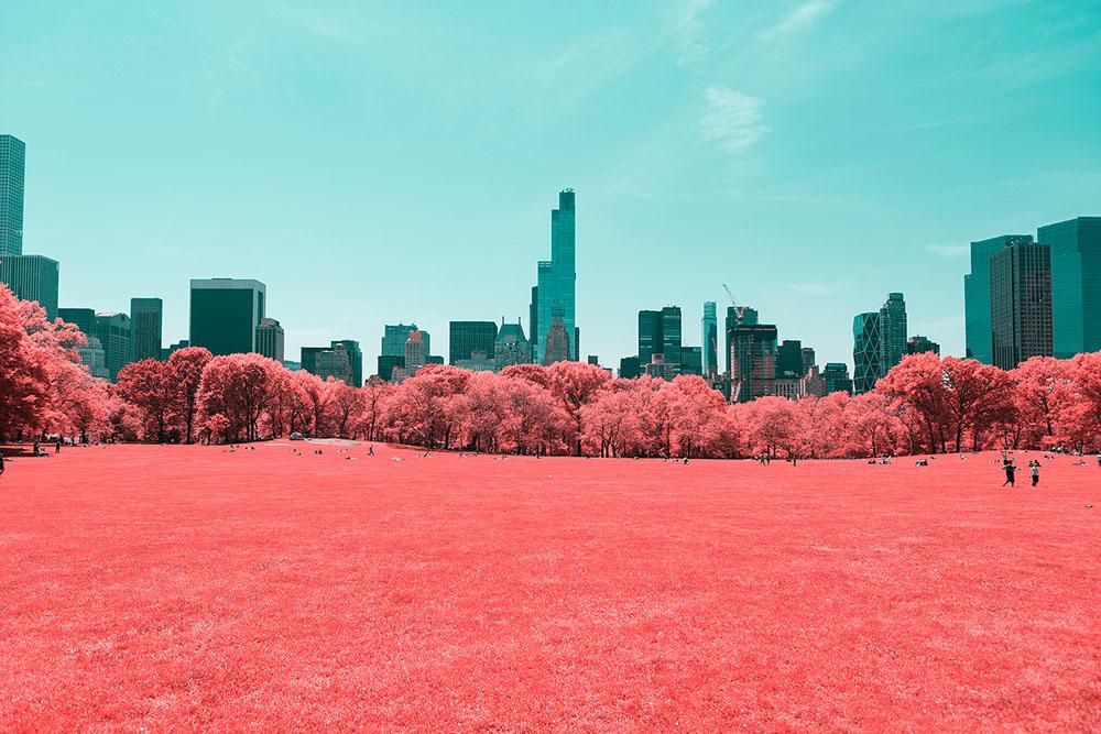 fotografia-infrarossi-central-park-new-york-paolo-pettigiani-1