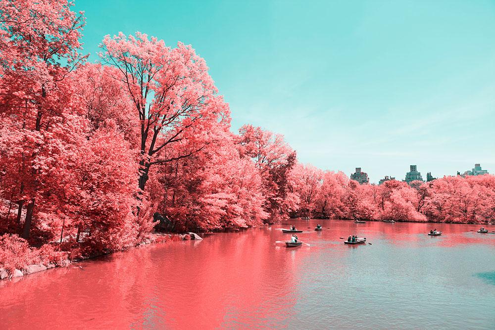 fotografia-infrarossi-central-park-new-york-paolo-pettigiani-2