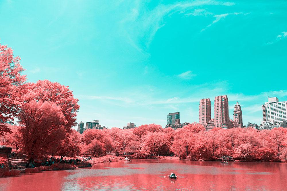 fotografia-infrarossi-central-park-new-york-paolo-pettigiani-4