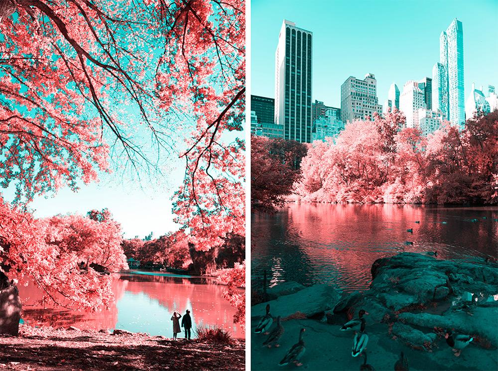 fotografia-infrarossi-central-park-new-york-paolo-pettigiani-7