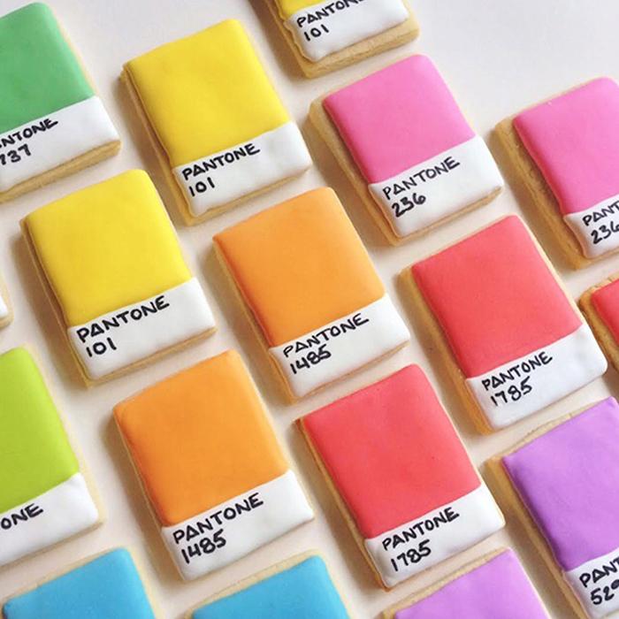 graphic-designer-holly-fox-crea-biscotti-pasta-zucchero-colorati-design-10