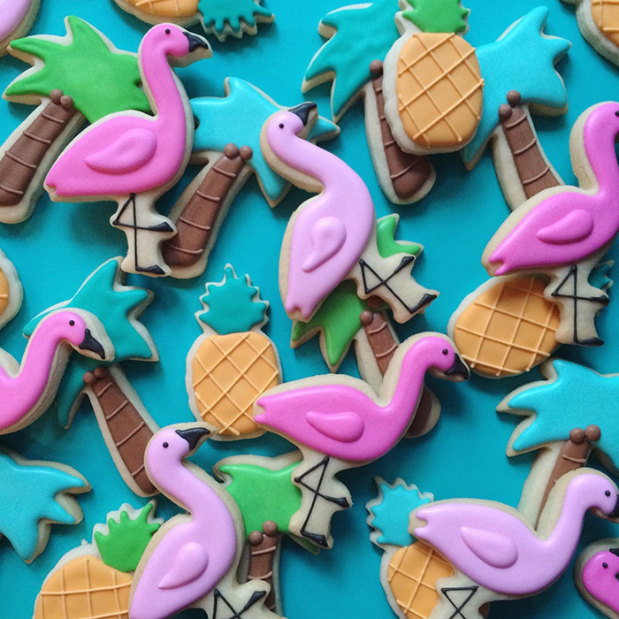graphic-designer-holly-fox-crea-biscotti-pasta-zucchero-colorati-design-21