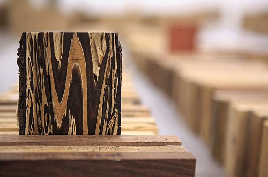 installazione-10000-alberi-bristol-katie-paterson-hollow-16