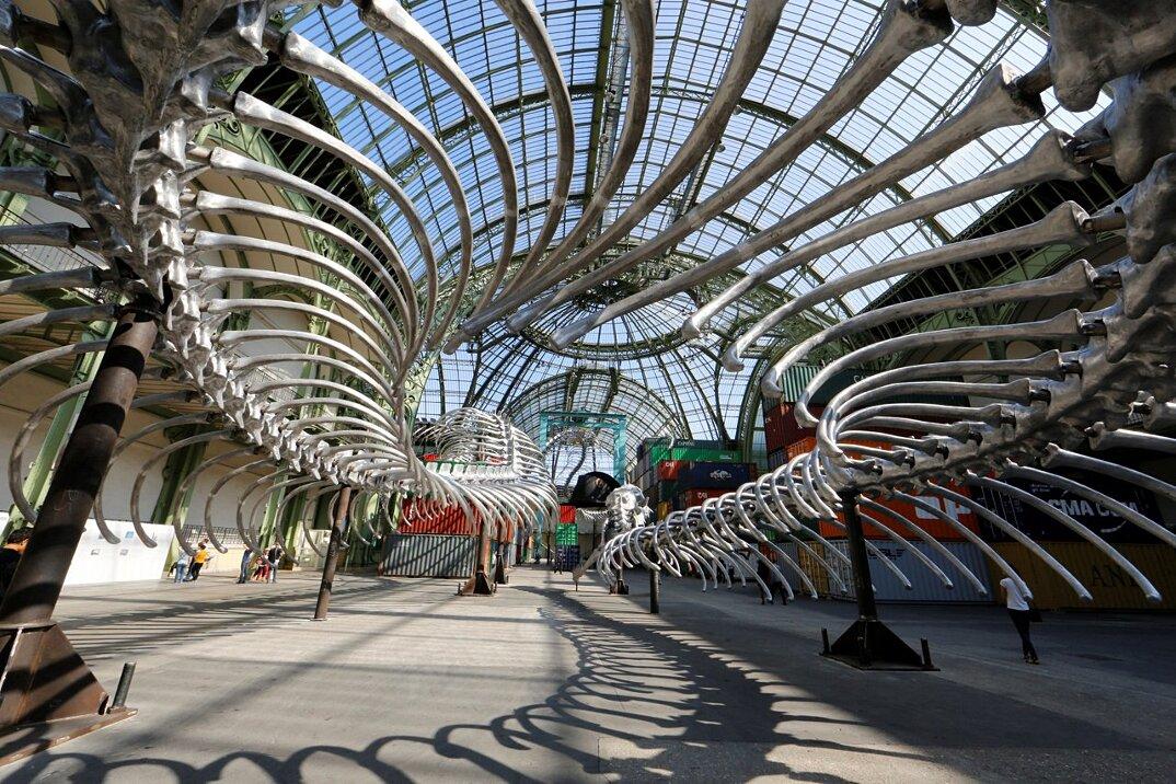 installazione-scheletro-serpente-empires-huang-yong-ping-monumenta-parigi-06