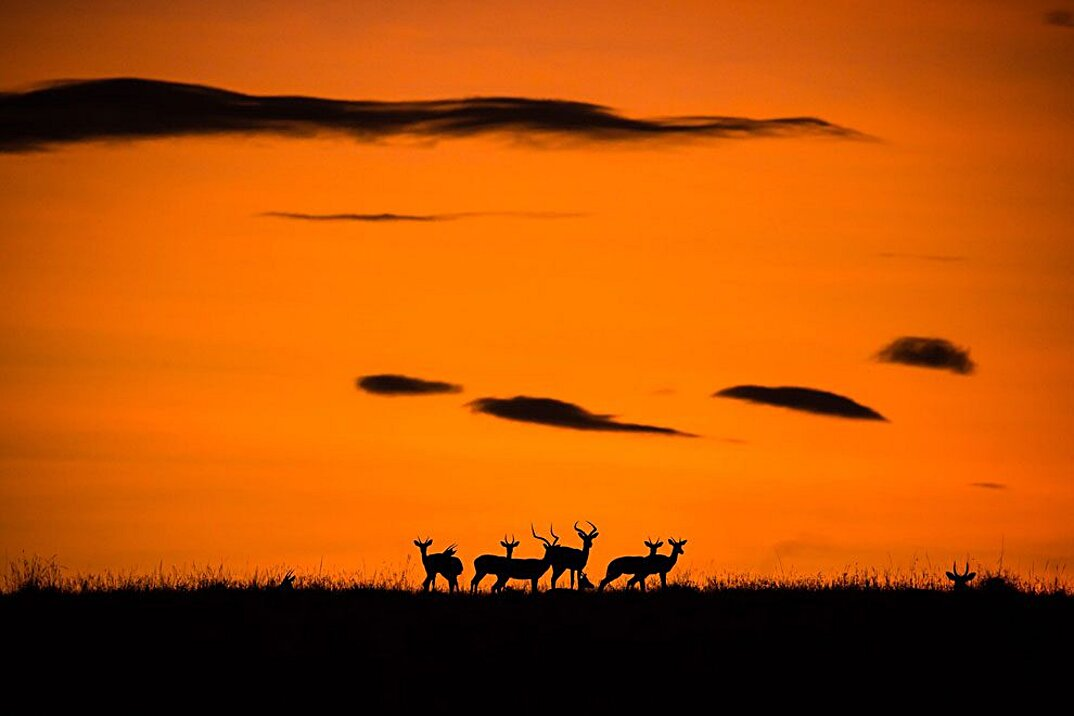 national-geographic-travel-photographer-of-the-year-2016-02