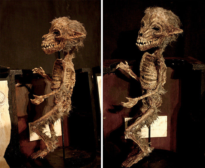 scheletri-teschi-strani-merrylin-cryptid-collection-londra-02