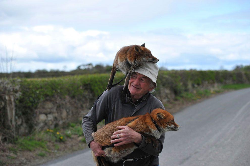 uomo-salva-volpi-amicizia-patsy-gibbons-grainne-minnie-08