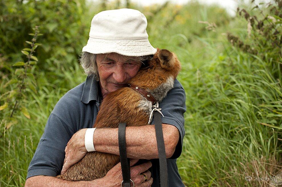 uomo-salva-volpi-amicizia-patsy-gibbons-grainne-minnie-22