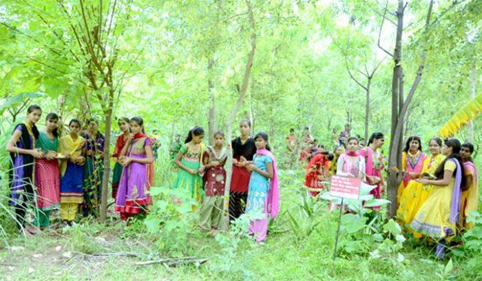 villaggio-india-piantano-111-alberi-ogni-bambina-nata-piplantri-2