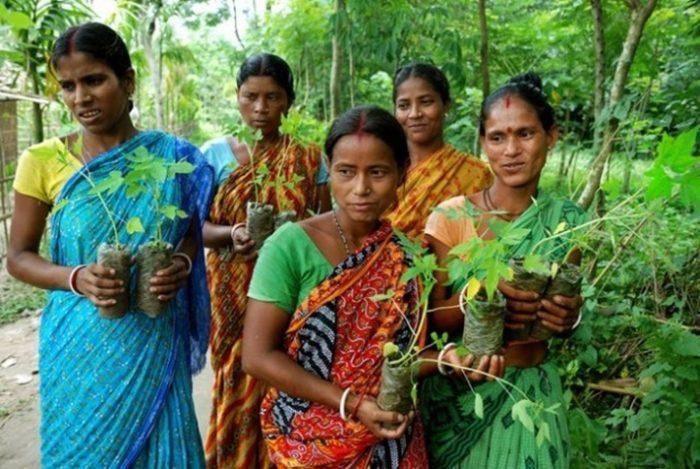 villaggio-india-piantano-111-alberi-ogni-bambina-nata-piplantri-3
