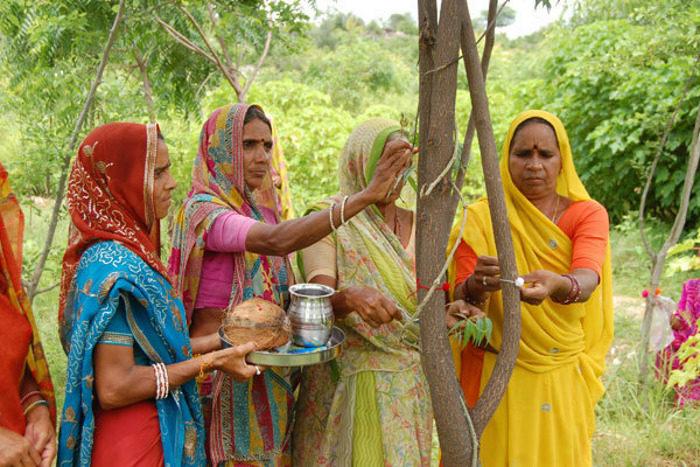 villaggio-india-piantano-111-alberi-ogni-bambina-nata-piplantri-7