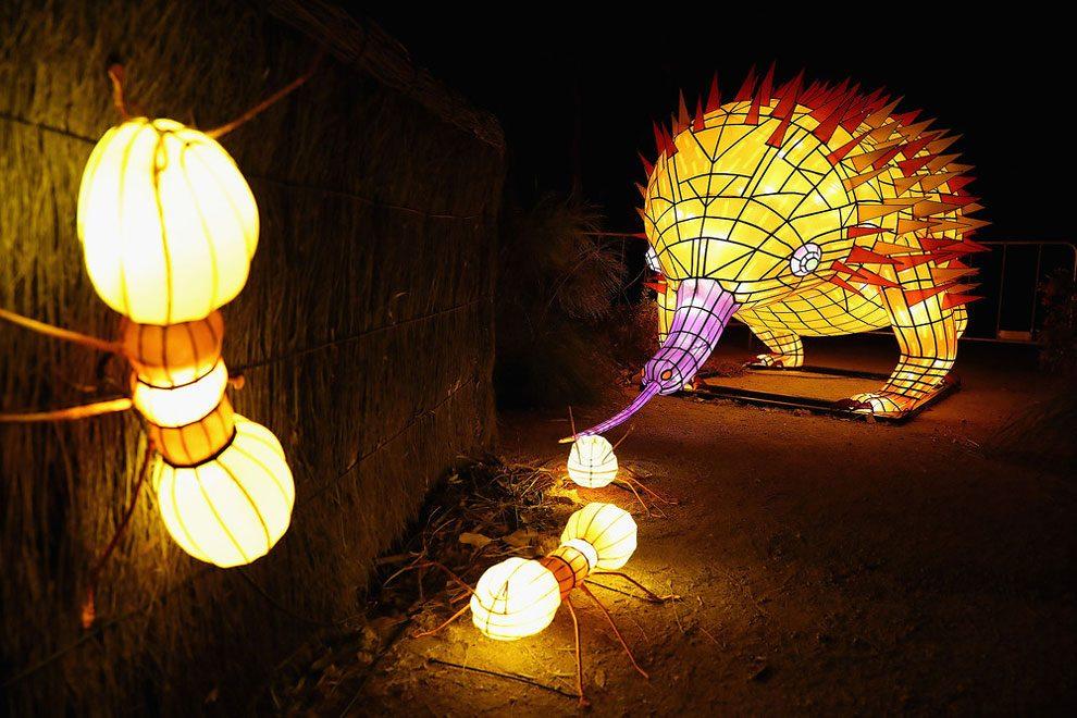 vivid-sidney-festival-luci-musica-sculture-animali-giganti-1