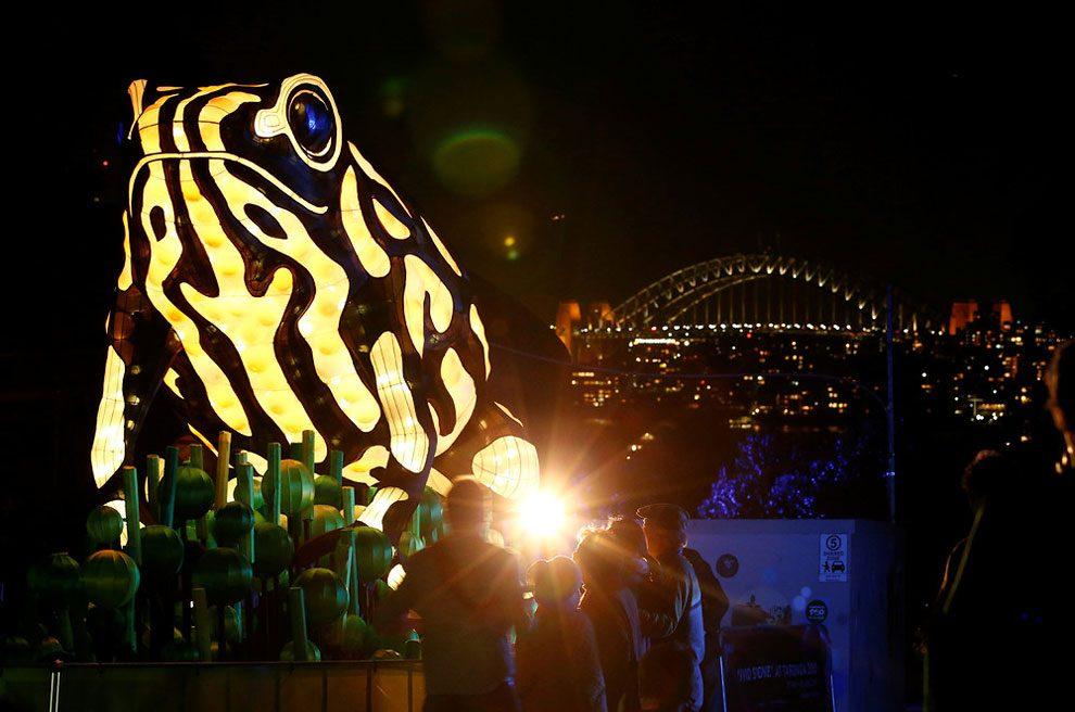 vivid-sidney-festival-luci-musica-sculture-animali-giganti-5