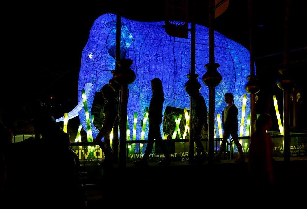 vivid-sidney-festival-luci-musica-sculture-animali-giganti-6