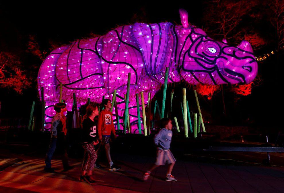 vivid-sidney-festival-luci-musica-sculture-animali-giganti-7