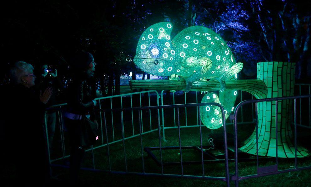 vivid-sidney-festival-luci-musica-sculture-animali-giganti-8