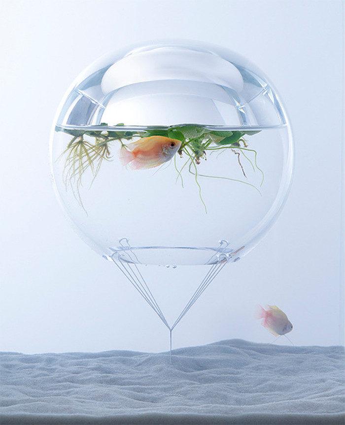 waterscape-acquario-capovolto-alghe-piante-pesci-haruka-misawa-1