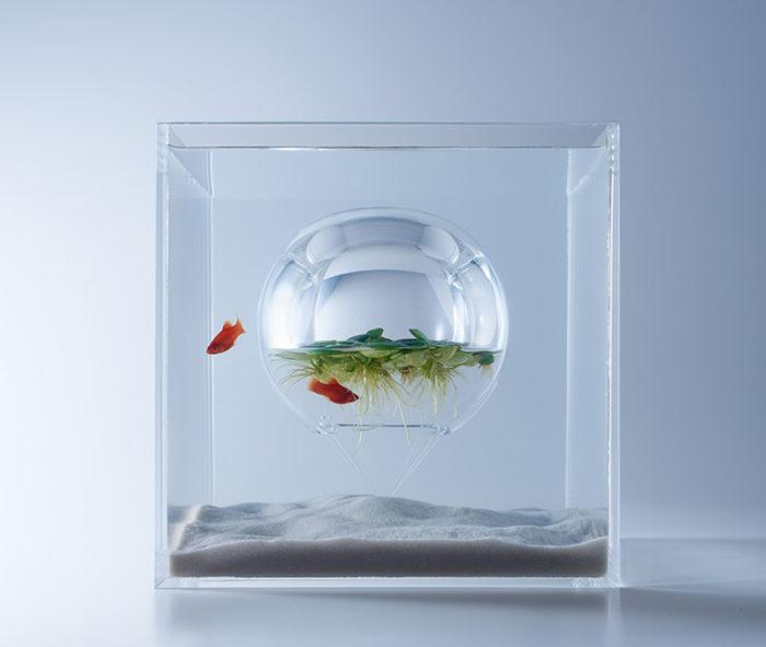 waterscape-acquario-capovolto-alghe-piante-pesci-haruka-misawa-8